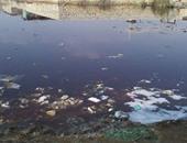 قارئ يشارك بفيديو لانتشار مياه الصرف بأحد ميادين العجمى بالإسكندرية