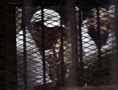 """بالصور.. تأجيل نظر محاكمة 379 إخوانيا فى """"أحداث فض اعتصام النهضة"""" لـ5 مارس"""