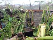 """اليونيسف: الإعصار بام قد يكون """"أحد أسوأ الأعاصير فى تاريخ المحيط الهادئ"""""""