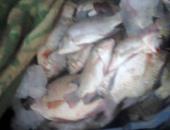 تعرف على عقوبة صاحب محل حاز 12 طن أسماك مملحة غير صالحة للاستهلاك