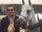 مصطفى شعبان يفوز بالجائزة الذهبية لبطولة مصر للخيول العربية الأصيلة