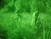 علماء يطورون مادة جديدة توضع فى العين تزودك بالرؤية الليلية