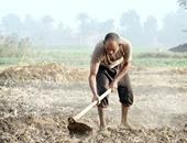 الزراعة: الانتهاء من حصر 482 ألف فلاح لتطبيق التأمين الصحى بالمحافظات