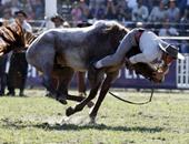 بالصور.. أخطر رياضة لترويض الخيول البرية بأمريكا اللاتينية