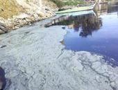 9 توصيات فى الخطة الوطنية للحفاظ على نهر النيل من التلوث.. تعرف عليها