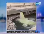 """خالد صلاح يعرض فيديو صادم لـ""""مزرعة سمكية"""" فى مياه الصرف الصحى بأسوان"""