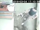 صحافة المواطن..بالفيديو..بلطجى بكفر الشيخ يفرض إتاوةعلى المحلات بكلب مفترس
