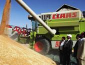 وزير الزراعة: سعر إردب القمح 420 جنيهاً على مستوى الجمهورية