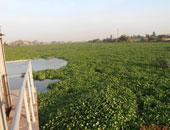 """الإسكندرية تستضيف ندوة """"الطبيعة بين الجمال والجلال 19 مايو الجارى"""