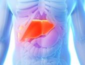 التليف الكبدى يسبب اعتلالا بالمخ نتيجة ارتفاع الأمونيا بالدم