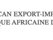 أفريكسيم بنك:٣.٧ مليار دولار لقروض وتسهيلات لمؤسسات مصرية