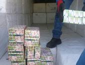 ضبط شحنة مخدرات بميناء الإسكندرية بقيمة مليار جنيه