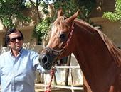 """بالصور.. حسن عبده """"وزير سياحة المنصورية"""".. الخيول عنده """"أغلى من ولاده"""""""