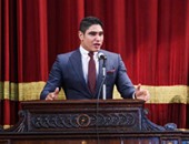 بالصور.. أبو هشيمة: أحد أسباب الثورة هو رمز رجل الأعمال المرتبط بالسياسية