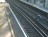 بريطانيا تحذر قائدى الدراجات بفيديو يسجل لحظة سقوط رجل بجوار خط القطار