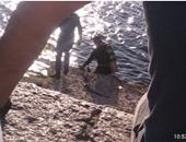 مصرع عامل أثناء الاستحمام فى مياة النيل.. وإصابة 3 أشخاص بحادث تصادم بالمنيا