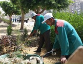 رئيس مدينة كفر الزيات يترأس حملة نظافة بمجلس قروى مشلة
