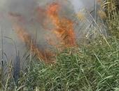 السيطرة على حريق نشب بقطعة أرض بجوار مصنع بوتاجاز بالمنيا