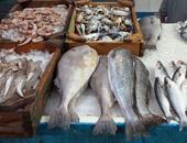 التموين تكثف حملاتها وتضبط 68 طن أسماك ولحوم منتهية الصلاحية بالأسواق