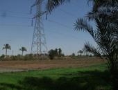 بالصور.. 5 آلاف فدان مهددة بالبوار بسبب نقص مياه الرى فى القليوبية