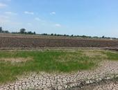 صحافة المواطن.. بالصور.. نقص مياه الرى يتسبب فى بوار أراض زراعية بالبحيرة