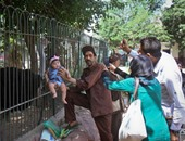 محافظة الجيزة تخصص 250 ألف كيس قمامة لتوزيعها على الحدائق خلال العيد