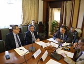 لجنة الشئون العربية بالبرلمان : عقد مؤتمر دولى لمكافحة الإرهاب ضرورة
