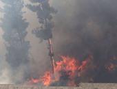 بالصور ..اشتعال النيران بالغابات المحيطة بمدينة القدس وإخلاء السكان منها