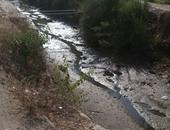 صحافة المواطن: بالصور.. نقص مياه الرى فى شبراخيت بالبحيرة يهدد محصول الأزر
