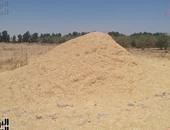 نقيب الفلاحين بجنوب سيناء يُطالب بتوفير شون لتخزين القمح وتسويقه