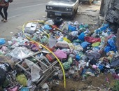 """قارئ """"اليوم السابع"""" يرسل صور انتشار القمامة بحى الجمرك فى الإسكندرية"""