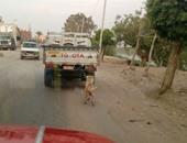 واتس آب اليوم السابع: بالصور..سائق يجر كلبا وراء سيارته على سرعة 80 كم