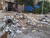 """""""صحافة المواطن """" : بالصور: الإهمال يضرب القاهرة الجديدة ويحولها  لعشوائية جديدة"""
