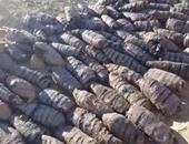 سقوط مسجل بحوزته 30 لفافة بانجو خلال حملة تفتيشية فى أسوان