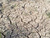 مزارعو قرى الواسطى ببنى سويف يشتكون انقطاع المياه وتهديد أراضيهم بالبوار