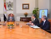 """السيسى يوجه وزير الكهرباء بالتوصل إلى صيغة نهائية لعقود """"الضبعة"""""""