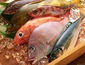 شعبة الأسماك: وفرة فى المعروض.. واستقرار الأسعار رغم زيادة الطلب