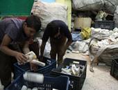 شكوى من إلقاء القمامة ببنها.. وقارئ يطالب بمعاقبة عمال الروبابيكيا