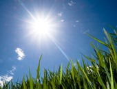 الأرصاد: انخفاض درجات الحرارة مستمر حتى الأسبوع المقبل.. وارتفاع الرطوبة
