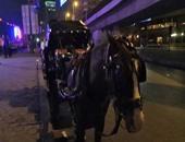 تعرف على ضوابط مواجهة أزمات عربات الحنطور فى المدن السياحية