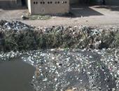 بالصور.. أهالى قرية الصفا بالدقهلية يشكون من تراكم القمامة بمصرف ميت أبوخالد