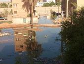 بالصور.. مياه الصرف تحاصر عمارات السد العالى وأعمدة الكهرباء بأسوان