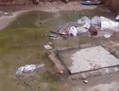 """بالفيديو..""""صحافة المواطن""""..مياه الصرف تغرق مساكن عثمان بالعاشر من رمضان"""