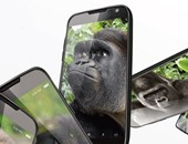 يعنى إيه زجاج Gorilla Glass وكيف سينهى أسطورة شاشات الآيفون المكسورة؟