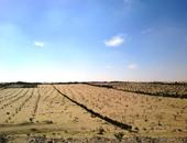 """رئيس جهاز تعمير سيناء الأسبق يوضح لـ""""إكسترا نيوز"""" عمليات التنمية في سيناء"""