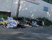 صحافة المواطن.. القمامة تحاصر مدرسة خاصة بمحيط قصر الاتحادية