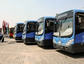 نقل عام إسكندرية: خسائر المرور 187 مليار جنيه سنويا نصيبنا منها 4.5 مليار