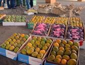الزراعة تعلن فتح أسواق جنوب أفريقيا أمام المانجو المصرية لأول مرة