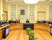 الحكومة تعلن الانتهاء من تأسيس شركة القاهرة للاستثمار والتطوير لتنمية الروبيكى