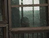 """دفاع المتهم 13 بـ""""مذبحة رفح الثانية"""" يدفع بعدم قانونية الجلسات"""